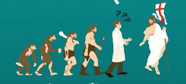 Hominid evolution through time, Drawing